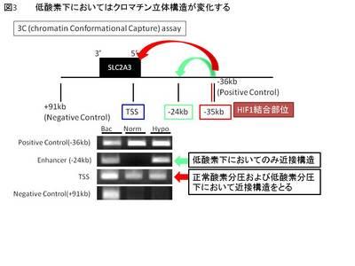 mimura3.JPG